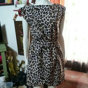 H&M Leopard Print Mini Dress Size 6